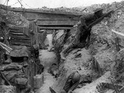 Le fonti della prima guerra mondiale