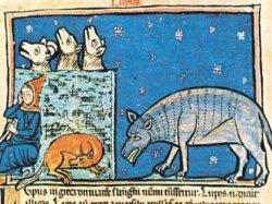 «Lo sguardo animale: L'immagine del Lupo nel Medioevo»